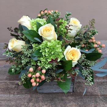 Заказ цветов с доставкой домодедово